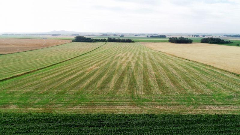 20 has. agrícolas con casa - monte