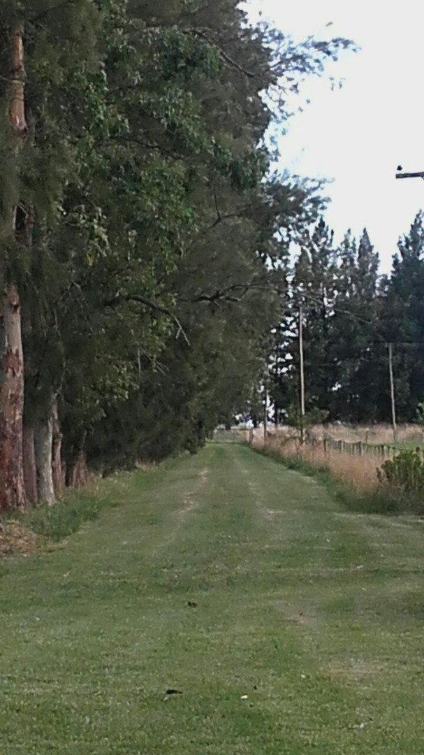 20 has sobre ruta 215 - loma verde