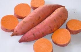 20 mudas de batata doce polpa laranja (beauregard)