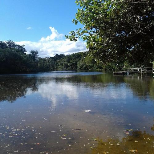 20 x 50  de bosque  rua 1 - 150m rio preto jd. coronel