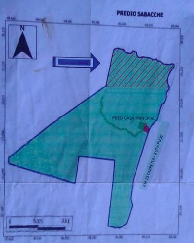 200 hectáreas en oxkutzcab para proyectos eco turístico o eólico