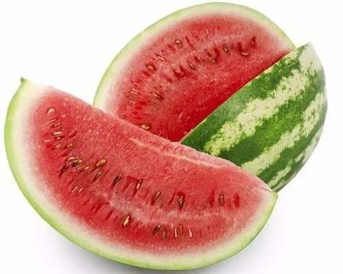 200 sementes melancia hibrida ranger # produto original