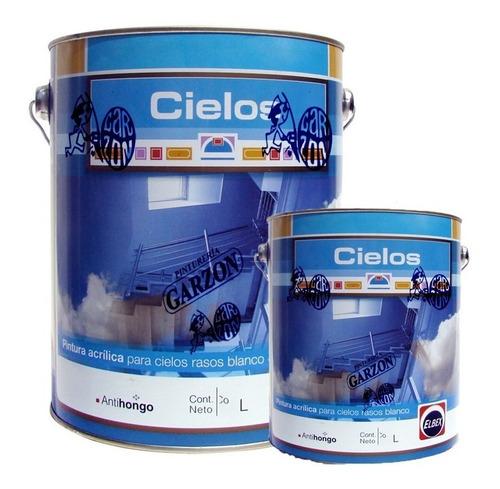 20l + 4l pintura elbex acrilica cielos rasos antihongos !