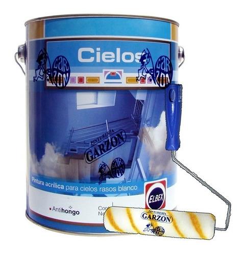 20l pintura elbex acrilica cielos rasos antihongos + regalo!