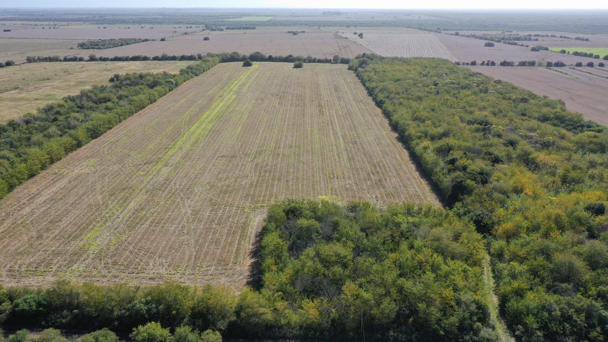 22 ha aldea asuncion, gualeguay - venta de campo agricola con monte para ganaderia
