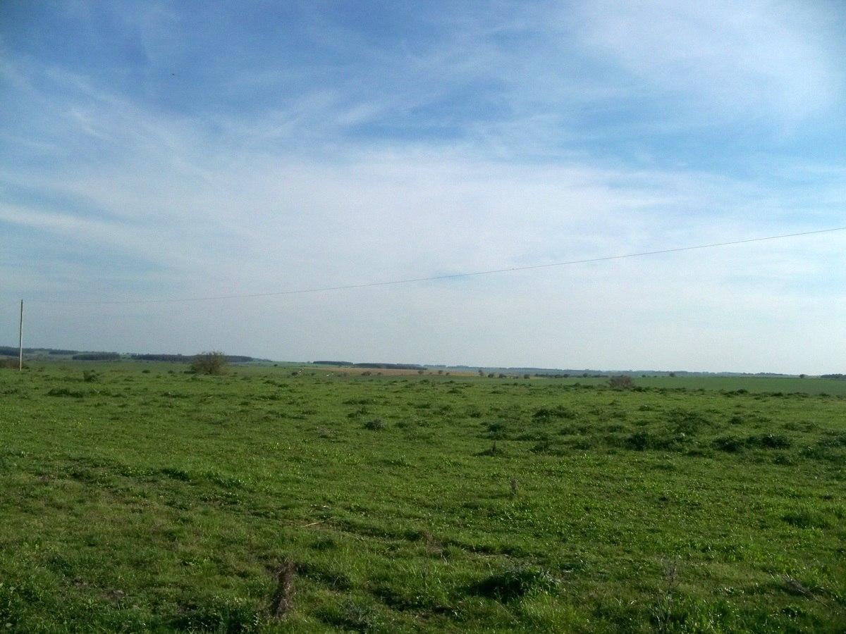 220 has agro ganaderas en soriano zona de risso c/ instalaci