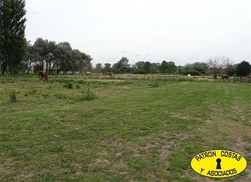 2222ml-haras  argentino chacra ideal para cria de caballos