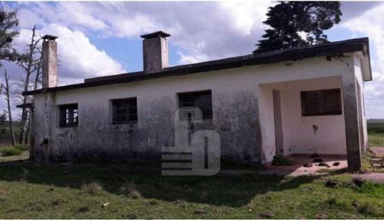227 ha ganaderas con casa - cerro largo