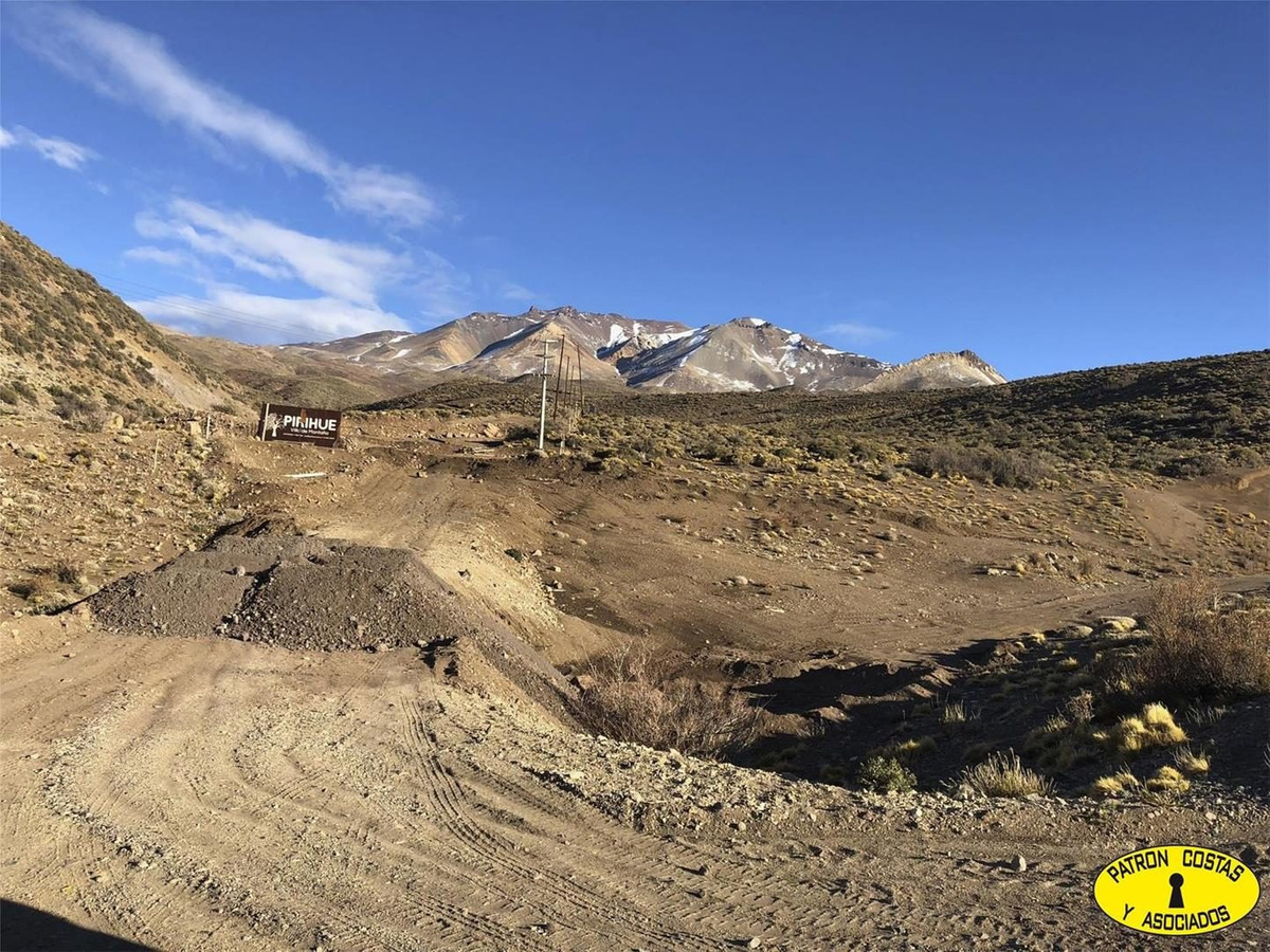 2435ml-fraccion 53 ha los molles - malargue_mendoza