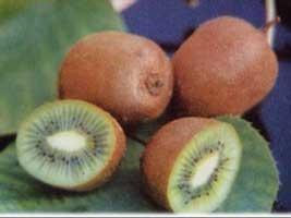 25 semillas de actinia chinensis - kiwi, grosella china 990