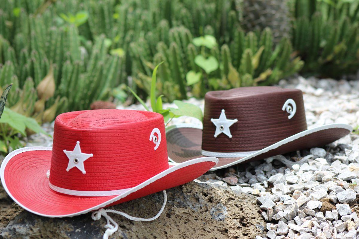 76a0d8a0dcb73 25 sombrero vaquero texano colores fiesta talla niño adulto. Cargando zoom.