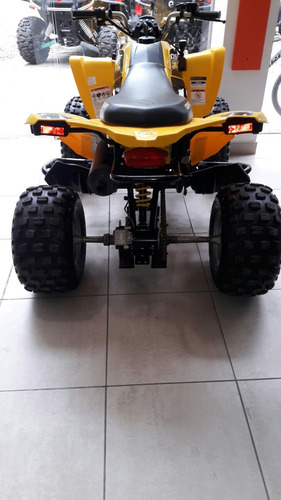 250 250 can-am