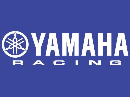 250 fazer yamaha
