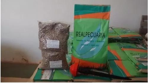 2kg de sementes de grama batatais+ 2 aspersor+10 kg de adubo
