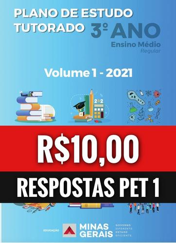 3° ano/pet 1 - respostas completas (mg) 2021