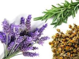 3 cojines de semillas y antifaz, aromaterapia, envío gratis