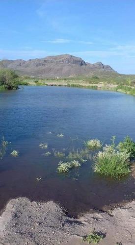 3 granjas de mas de 1,000 m2 cada una con nogales y riego de microaspersion muy cerca de la presa, a