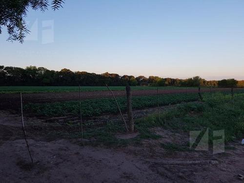 3 hectareas camino a 60 cuadras km 12 apto uso industrial o loteo