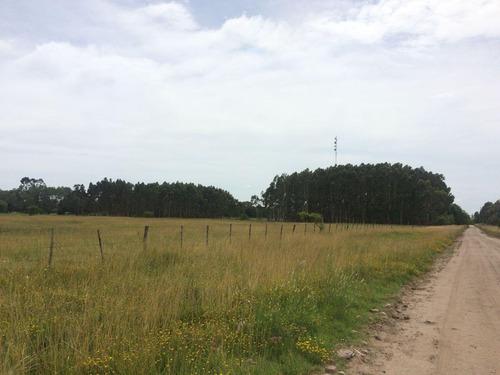 3 hectareas en gral. madariaga