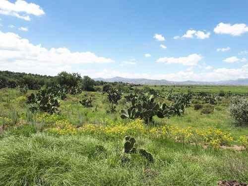 3 hectáreas en jagüey de téllez