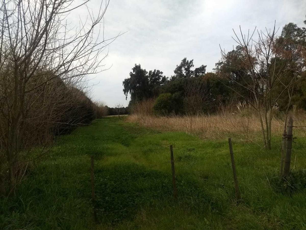 3 hectáreas en pontevedra