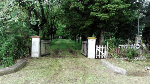 3 hectareas o lotes por separados en barrio santa anita