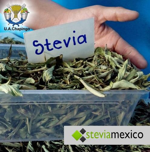 3 piezas de stevia liquida