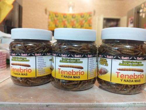 3 piezas tenebrio ecotics premio p/animales insectívoros 50g