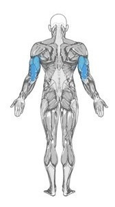 3 puxador triceps biceps remada multi exercicios funcional