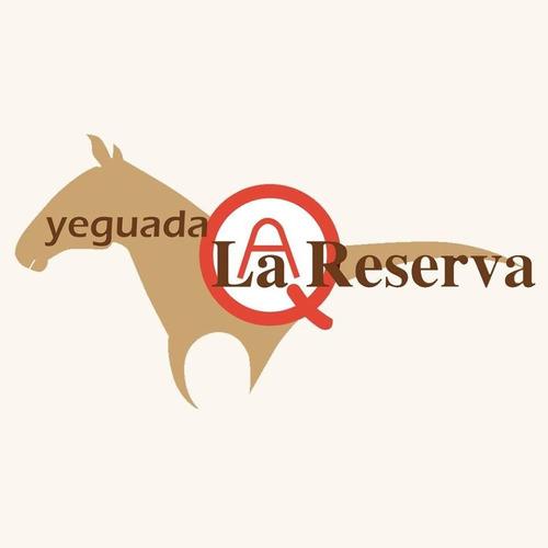 3  shampoo del caballo yeguada la reserva y colageno regalo
