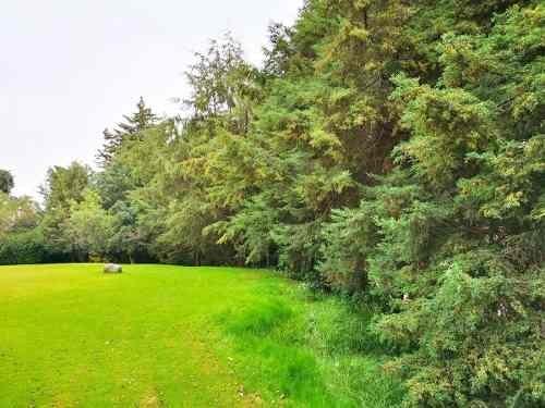 3 terrenos ( juntos) en exclusivo fracc. ranchos san francisco, alvaro obregon