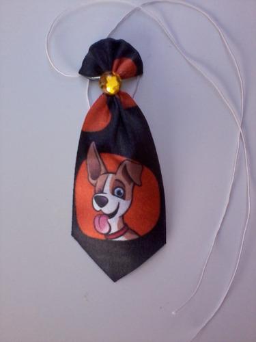 30 gravatas p - cães,pet shop, banho e tosa