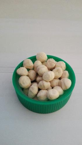 300 semillas de moringa listas para tomar