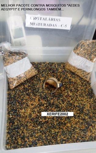 30.000 sementes crotalária juncea + 3 espécies contra dengue