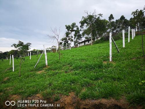 32b :: : terreno barato