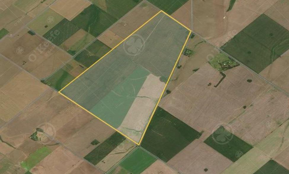330 has -  san pedro  100 % agrícolas - financiado / oportunidad !