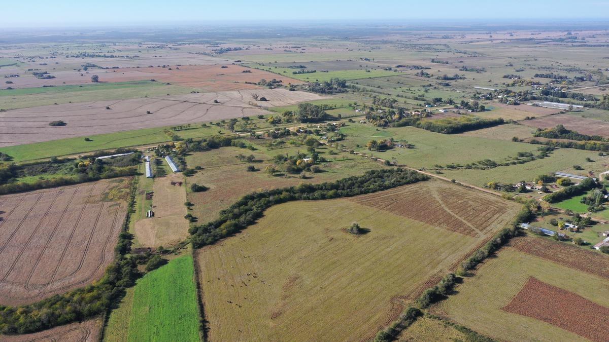 34 ha aldea asuncion, gualeguay, entre rios - chacra agricolas cerca de paso de las lanas - venta