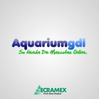 35pack dogchow sobre 100gr c/u, aquariumgdl
