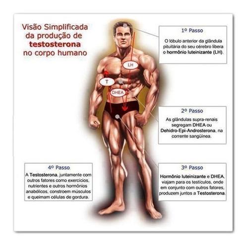360 cáps somatodrol + massa muscular - gordura frete free