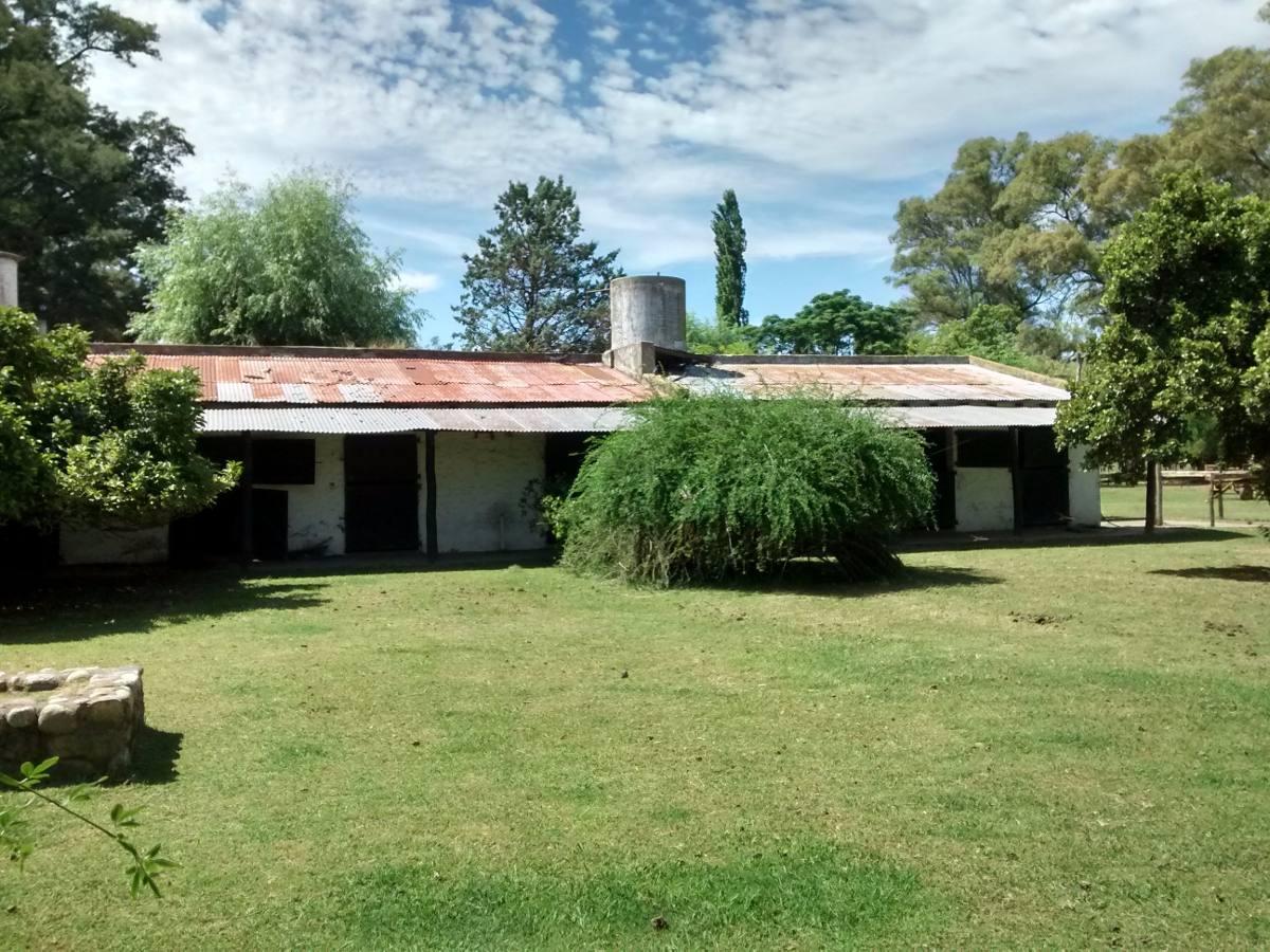 368 hectáreas ideal emprendimiento  gral. rodriguez