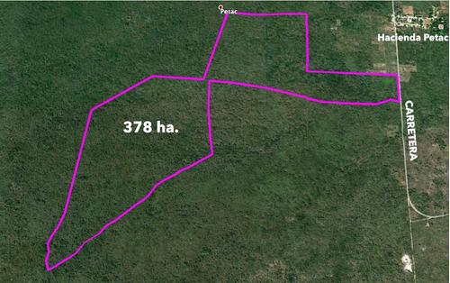 378 has en venta en san antonio tzacalá a 15 km de mérida