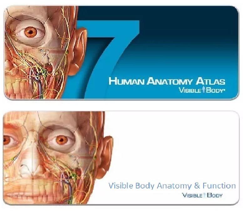 3d Pc Programa Medicina Visible Body Anatomía & Función - $ 169.00 ...