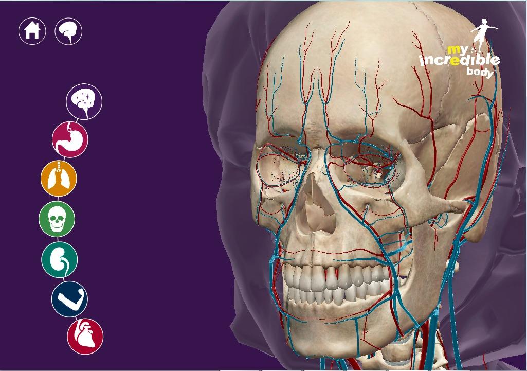3d Programa Mi Increible Cuerpo Anatomia Para Niños 2015 - $ 199.00 ...