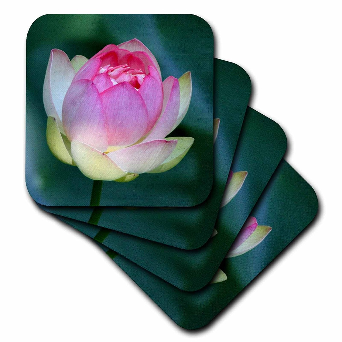 3drose a lotus flower ceramic tile coasters set of 4 cs cargando zoom izmirmasajfo