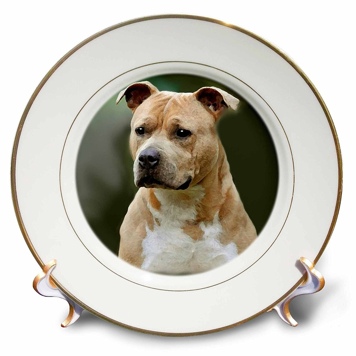 3drose Cp_4253_1 American Staffordshire Terrier Porcelain P ...