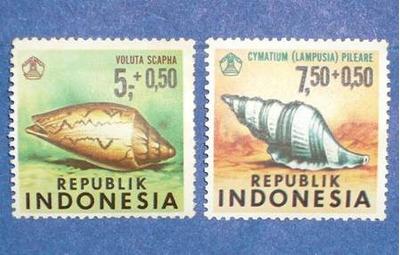 4 estampillas moluscos indonesia caracoles voluta cymatium