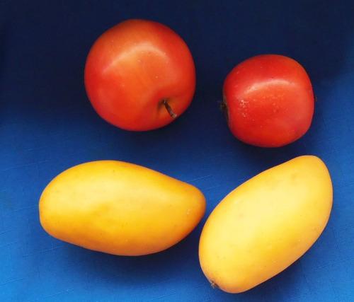 4 frutas de cera e resina  manga e maçâ
