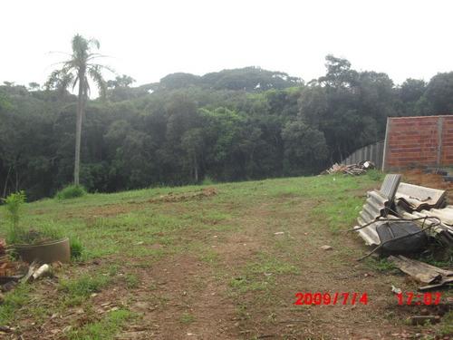 4 terrenos no bairro do cupim