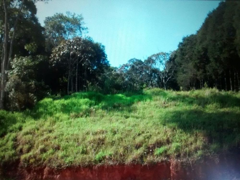 4 terrenos total 4533,50 m2