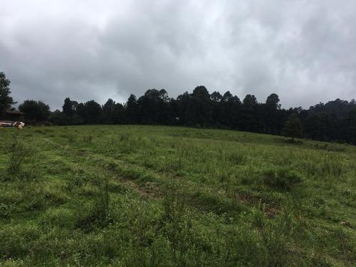 40 hectáreas a 15 minutos de valle de bravo